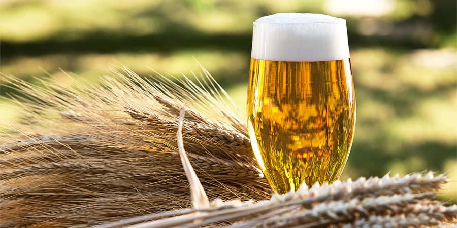 Alcoholic Beverages malts